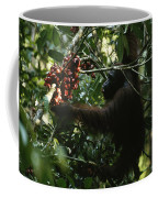 An Orangutan Gorges Himself Coffee Mug