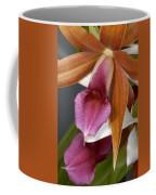 An Orchid, Probably A Cattleya Hybrid Coffee Mug