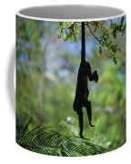 An Unidentified Monkey Hangs Coffee Mug