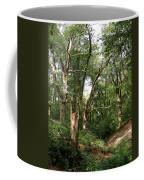 Ancient Woodland Coffee Mug