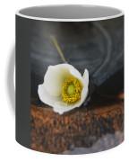 Anemone Alone  Coffee Mug
