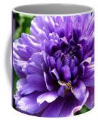 Anemone Coronaria Named Lord Lieutenant Coffee Mug