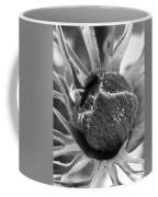 Anemone De Caen Or Poppy Anemone Coffee Mug