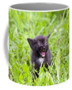 Angry Kitten Coffee Mug