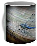 Anisoptera Coffee Mug