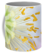 Anthers Of Poppy Flower Coffee Mug
