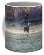 Antlers In The Sun Coffee Mug