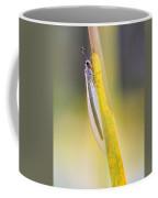 Antlion Coffee Mug