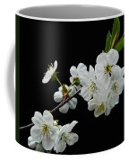 Apple Blossom 1015 Coffee Mug