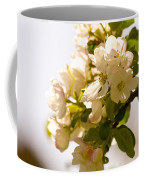 Apple Blossoms 9 Coffee Mug