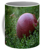 Apple Gravity Coffee Mug