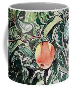 Apple Tree Sketchbook Project Down My Street Coffee Mug