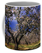Apple Trees In An Orchard, County Coffee Mug