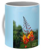 Aransas Nwr Texas Coast Coffee Mug
