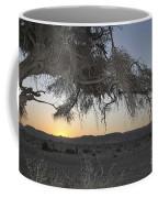 Aravah Desert Landscape  Coffee Mug