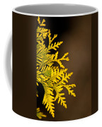 Arbovitae Fan 1 Coffee Mug