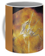 Archaeopteryx Lithographica Coffee Mug