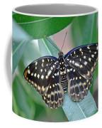 Archduke Butterfly Coffee Mug