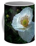Arctic Poppy Coffee Mug