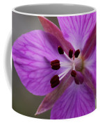 Arctic Riverbeauty Coffee Mug