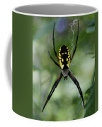 Argiope Coffee Mug