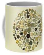 Arrangement Of Diatoms Coffee Mug
