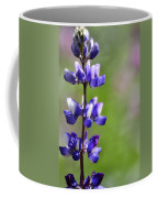 Arroyo Lupine  Coffee Mug