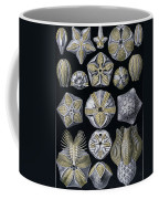 Artforms Of Nature Coffee Mug