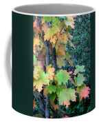 As The Leaves Turn Coffee Mug