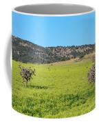 Ash Creek Valley II Coffee Mug