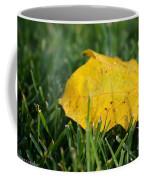 Aspen Leaf Coffee Mug