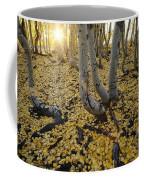 Aspen Trees Stand Above A Carpet Coffee Mug