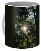 At Last Light Coffee Mug