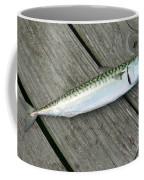 Atlantic Mackerel Scomber Scombrus Coffee Mug