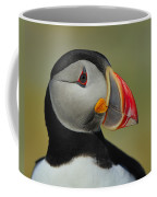 Atlantic Puffin Portrait Coffee Mug