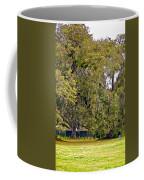 Audubon Park 2 Coffee Mug by Steve Harrington