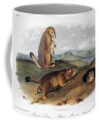 Audubon: Prairie Dog, 1844 Coffee Mug