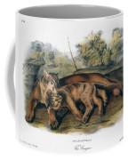 Audubon: The Cougar Coffee Mug