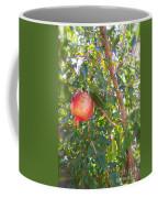 Aunt Tissy's Pomegranate Tree  Coffee Mug