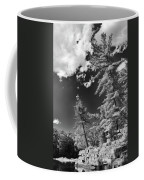 Ausable Chasm 1621 Coffee Mug