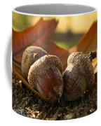 Autumn Acorns Coffee Mug