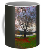 Autumn At British Camp Coffee Mug