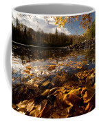 Autumn At Ragged Falls Coffee Mug