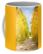 Autumn Back County Road Coffee Mug