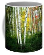 Autumn Birch Grove Coffee Mug