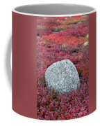 Autumn Blueberry Field Coffee Mug