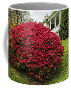 Autumn Blush Coffee Mug