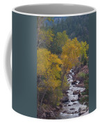 Autumn Canyon Colorado Scenic View Coffee Mug