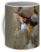Autumn Colors Reflected In Pool Of Water Coffee Mug
