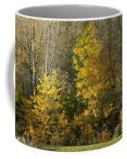 Autumn Colours Coffee Mug